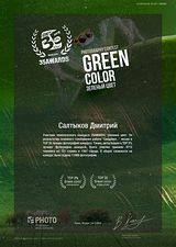35AWARDS Зеленый цвет