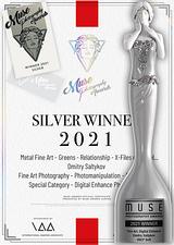 MPA Silver Winner