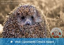 Won Community Choice Award